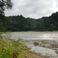 Sandy River adjacent to the campground.- Oxbow Regional Park Campground