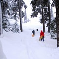 Sledders hard at work.- Mount Bachelor, Cinder Cone Sledding