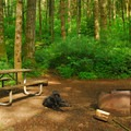 Ainsworth State Park Campground walk-in campsite.- Ainsworth State Park Campground