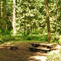 Typical campsite.- Oxbow Regional Park Campground