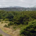 Looking north toward Newport's Yaquina Bay Bridge.- South Beach State Park Campground