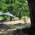 Typical campsite.- Klickitat River Campground