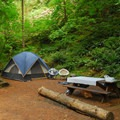 Typical campsite in the park's main campground- Beacon Rock State Park Campground