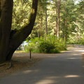 - Beverly Beach State Park Campground