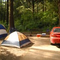 "Typical site in the ""C"" loop.- Beverly Beach State Park Campground"