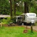Typical sites.- Fort Stevens State Park Campground