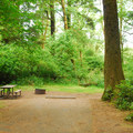 One of six tent sites.- Fort Stevens State Park Campground