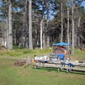 One of the campground's two group sites.- Cape Lookout State Park Campground