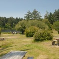 A picnic area east of Coffenbury Lake.- Fort Stevens State Park Campground
