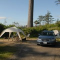 Typical campsite.- Cape Lookout State Park Campground