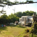 """Typical site in the """"D"""" loop.- Cape Lookout State Park Campground"""
