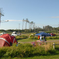 """Looking over the campground's """"B"""" sites.- Cape Lookout State Park Campground"""