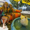 Locals relaxing at KEEN's booth at the 2018 Outdoor Project Denver Block Party.- 2018 Outdoor Project Denver Block Party Recap