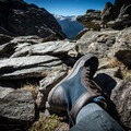 The Boulder Boot comes in a variety of color options. - Gear Review: Lems Shoes Boulder Boot Men's