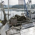 A commerical oyster catch at the Port of Garibaldi.- The Tillamook Bay Heritage Route