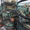 Dungeness crab pots at the Port of Garibaldi.- The Tillamook Bay Heritage Route