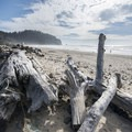 View south of Cape Meares from Cape Meares Beach.- The Tillamook Bay Heritage Route
