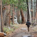 Mirror Lake Loop Trail.- Exploring Yosemite Valley in Fall