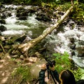 Working in the bushes to gain that perfect perspective.- The Long Exposure: An Outdoor Photography Field Trip to Bridal Veil Falls