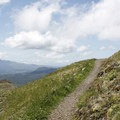 Hiking trail near the summit of Saddle Mountain.- 11  Epic Locations for Early Summer Wildflowers Near Portland