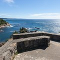 The lookout at Cape Arago.- 5 Reasons to Make the Trip to the Southern Oregon Coast