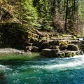 Brice Creek, roughly one hour southeast of Eugene, Oregon.- Oregon's 30 Best Swimming Holes