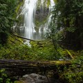 Lower Proxy Falls- In Search of Eugene Area Waterfalls