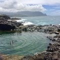 A seaside dip into Queen's Bath.- Woman In The Wild: Sarah Connette
