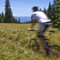 Alpine Trail. - Southern Oregon's Best Mountain Bike Trails