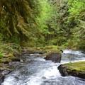 Exploring the Alsea Falls Recreation Area. - 19 Adventures Between You and The Oregon Coast