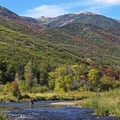Fishing the Middle Provo.- 5 Ways to Experience Autumn in Utah