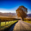 An autumn stroll down Hyatt Lane in Cades Cove. - Stunning Fall Adventures in the Central Appalachians