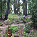 Mountain biking from Shadow Bay to Bobby Lake via the Betty Lake Trail.- 10 Epic Adventures at Waldo Lake