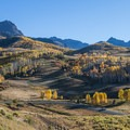 One of several aspen groves along Last Dollar Road.- A 3-Day Adventure Itinerary in Telluride, Colorado