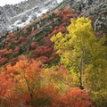 Brilliant fall colors along Utah's Highway 210.- Great American Towns for Fall Foliage