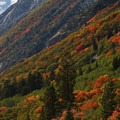 Brilliant fall colors along Utah's Highway 210.- A Weekend in Little Cottonwood Canyon