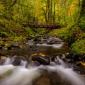 Footbridge over Gorton Creek, Wyeth State Park.- Columbia River Gorge National Scenic Area