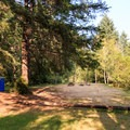 Group Campsite number 50 is next to the motel.- Loon Lake Lodge + RV Resort