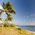 A few palms sit atop the short bluff.- Tracks Beach Park