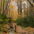 An old footbridge covered in fallen leaves.- Middle Prong Trail