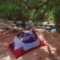 A typical campground along Havasu Creek in the campground.- Havasu Falls Hike via Havasupai Trail