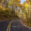 Mount Sterling Road, Great Smoky Mountains National Park.- 8 Unique Fall Camping Trips