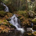 Mouse Creek Falls, Great Smoky Mountains.- America's Best National Parks for Fall Foliage and Wildlife