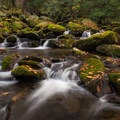 The Ramsey Prong at low flow.- 16 Must-do Hikes in Great Smoky Mountain National Park