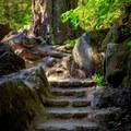 Stone steps.- Toketee Falls