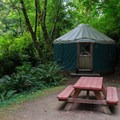 Yurt 69B is nestled in the forest and sleeps four.- Loon Lake Lodge + RV Resort