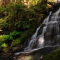 Horseshoe Creek Falls at lower late summer flow.- Siouxon Creek Hike