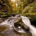 McDowell Creek below lower McDowell Creek Falls in fall.- Best Fall Hikes Near Portland