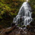 Fairy Falls.- Columbia River Gorge National Scenic Area