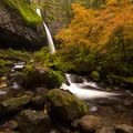 Ponytail (Upper Horsetail) Falls surrounded by autumn colors.- Columbia River Gorge National Scenic Area